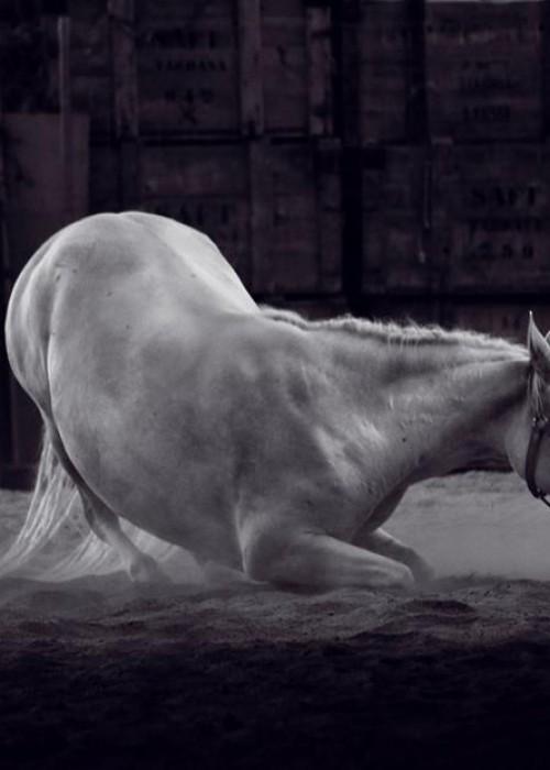 Juanjo Grimaldos. Composición en blanco y negro digital.