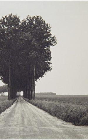 Henri Cartier-Bresson8