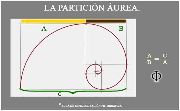 """En el caracol Nautilo el diámetro de una espiral dividido por la inmediatamente anterior. PHI. Esa misma espiral se da en los huracanes y en la forma de la galaxia. En la espiral de un girasol o en la de la piña.  Para completar os pido que si miráis al """"Hombre de Vitruvio"""" y luego os medís la  altura y la dividís por la distancia del ombligo al suelo y no os da 1,618 , no pasa nada. Dijimos que es aproximadamente."""