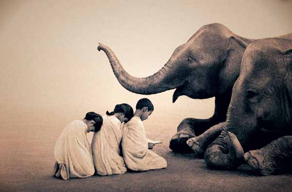 Gregory Colbert Ashes and Snow