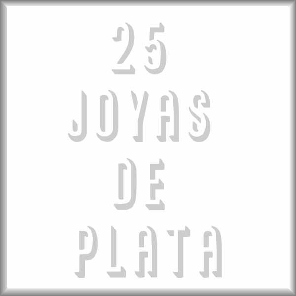 Fotolibro de los alumnos del curso anual. 25 joyas de plata.