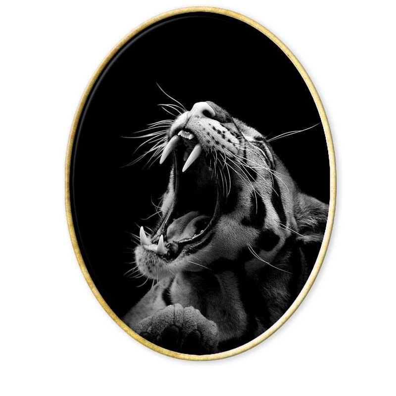Fotografía de animales. Enciclopedia de fotografía.