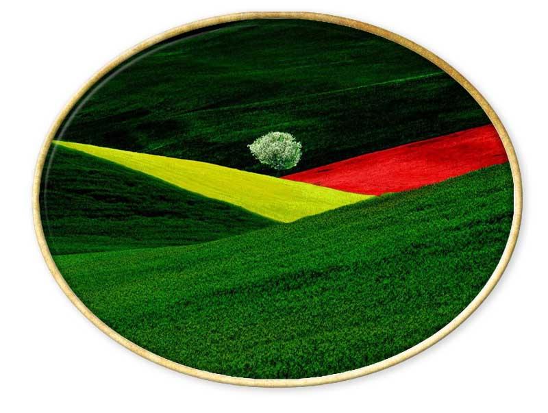 La imagen tiene un atributo ALT vacío; su nombre de archivo es Franco-Fontana.jpg