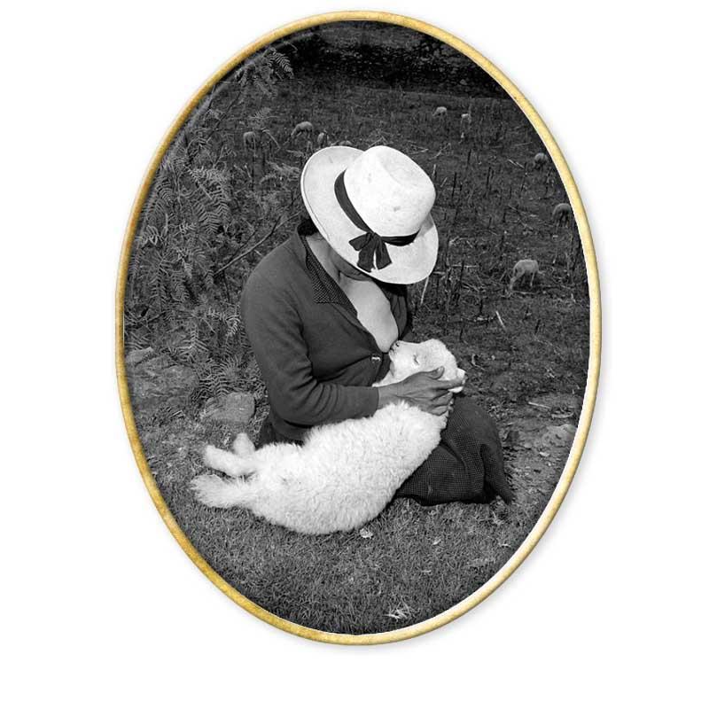 Catalin Valentine's Lamb, Ancash, Peru, 1981© Rosalind Solomon